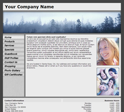 Standard Panoramic Gray Website Design (126)