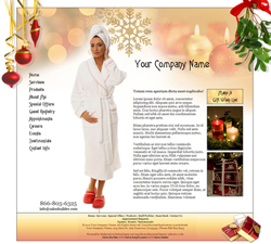 Seasons Winter Website Design (25)