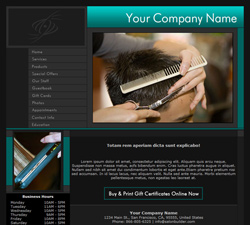 Professional Teal Website Design (222)