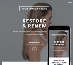 Chrome Restore Website Design (813)