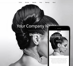 Hazel Shine Website Design (854)